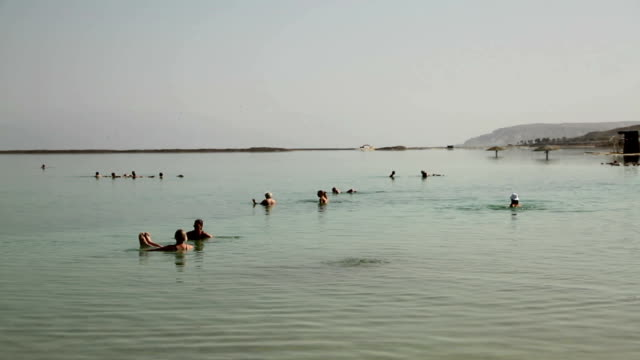 dead sea - dead sea stock videos and b-roll footage