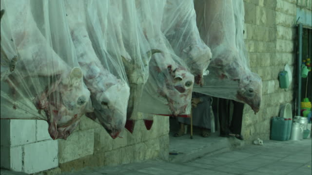 dead sheep hanging outside butcher shop, jordan - channel islands england stock videos & royalty-free footage