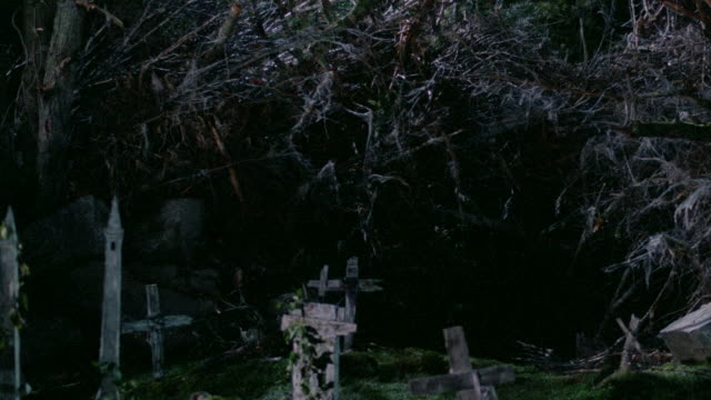 dead trees surround old wooden crosses in a small forest cemetery. - cemetery stock videos & royalty-free footage