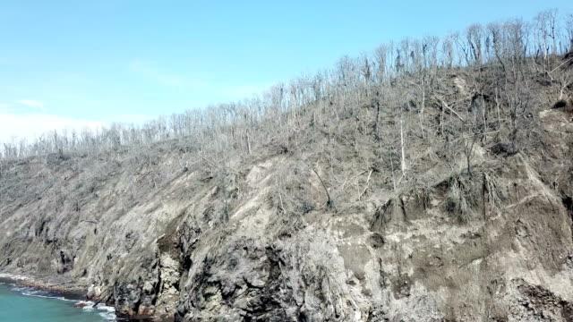 dead wasteland island near anak krakatau volcano, all trees and plant life killed in major volcanic eruption - danger stock videos & royalty-free footage