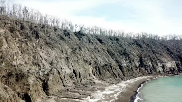 dead wasteland island near anak krakatau volcano all trees and plant life killed in major volcanic eruption - dead plant stock videos & royalty-free footage