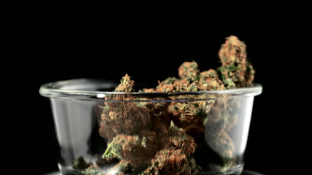 time warp dealer weighing marijuana buds - marijuana herbal cannabis stock videos & royalty-free footage