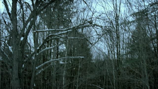 SLO MO TD MS WS PAN Death figure on horseback chasing woman running through winter woods, Morrisville, Vermont, USA