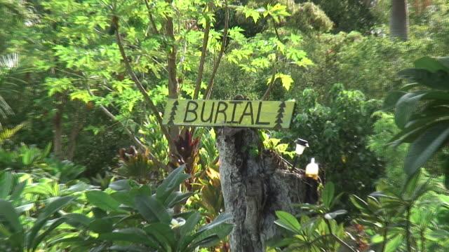 (HD1080i) Tod: Tropische Cemetery, langsam Poignant ziehen