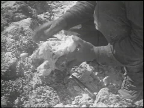 death valley - 6 of 14 - andere clips dieser aufnahmen anzeigen 2335 stock-videos und b-roll-filmmaterial