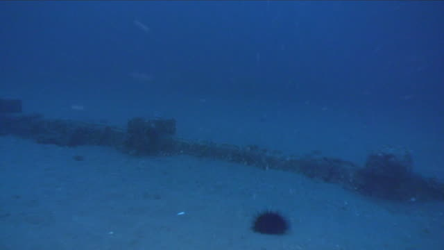 underwater, debris at sea bottom, miyagi, japan - undersea video stock e b–roll