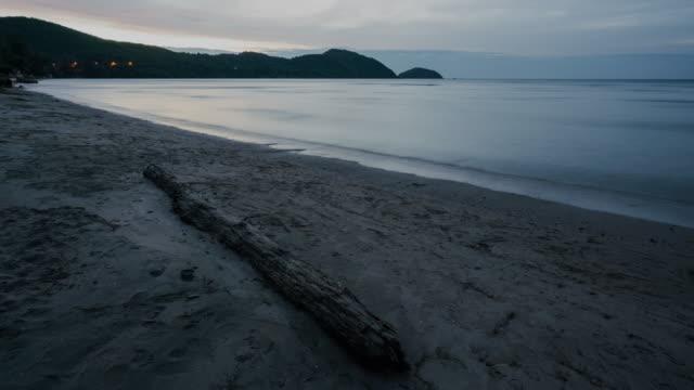 stockvideo's en b-roll-footage met verval hout op het strand. - drijfhout