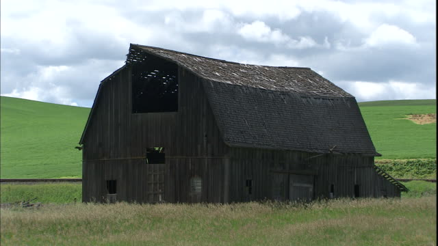 a decaying barn stands in a farm field. - palouse stock videos & royalty-free footage