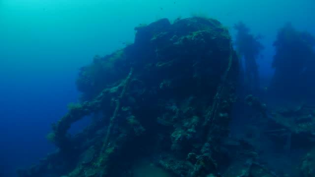 vídeos de stock e filmes b-roll de decaying usat liberdade naufrágio do submarino, bali, indonésia (4k - coral macio