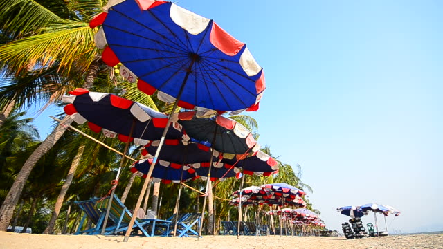 deck chairs on beach in summer season - full hd format stock videos & royalty-free footage