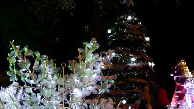 飾られたクリスマスツリー - リオグランデドスル州点の映像素材/bロール