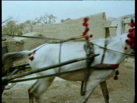 decorated horse and carriage pass through rural village afghanistan; 1975 - compartment stock videos & royalty-free footage