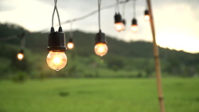 licht dekoriert im reis garten - elektrische lampe stock-videos und b-roll-filmmaterial