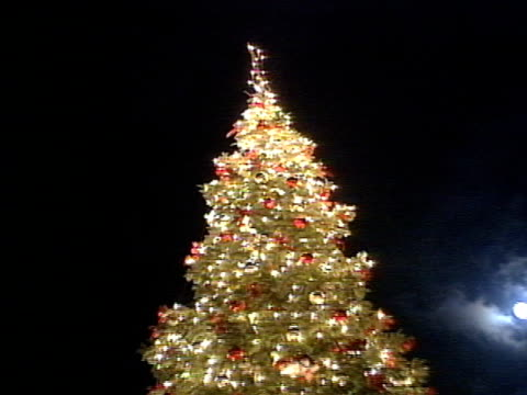 stockvideo's en b-roll-footage met ms zo decorated lighted christmas tree outdoors at pier 39 w/ pier 39 flags on poles moving in wind unidentifiable people walking around - pier 39