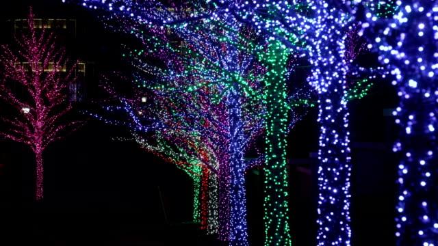クリスマスの装飾を施した木 - クリスマスライト点の映像素材/bロール