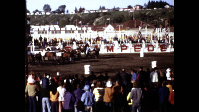 "decorated wagons of various colors pulled by horses running in front of the audience, fence in the background with the word ""stampede"" ""calgary... - rodeo stock videos & royalty-free footage"