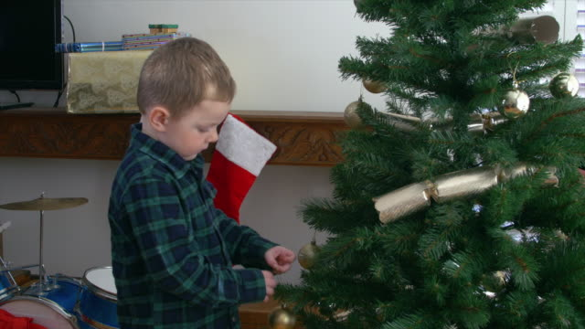 decorating christmas tree - plaid shirt stock videos & royalty-free footage