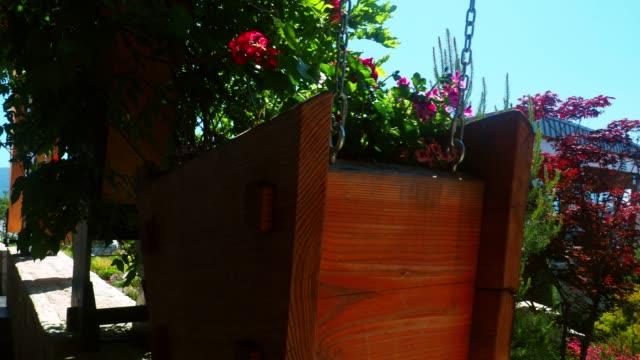 山の中テラスで装飾的な植物 - ゼラニウム点の映像素材/bロール