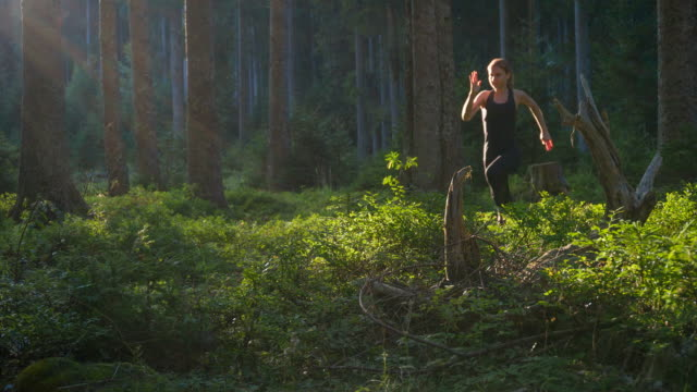 dedicated athlete running through woods - woodland stock videos & royalty-free footage