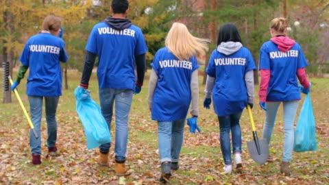dedicated environmental volunteers - t shirt stock videos & royalty-free footage