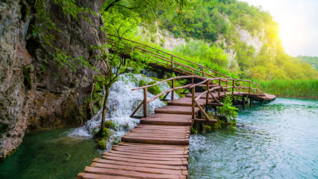 steadycam: deep forest stream with crystal clear water and wooden boardwalk, plitvice lakes, croatia - dreamlike stock videos & royalty-free footage