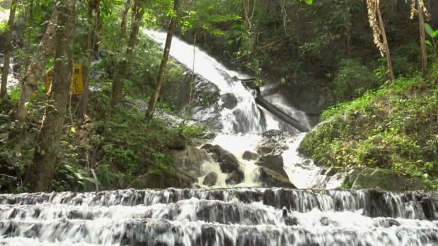 vídeos y material grabado en eventos de stock de cascada de bosque profundo en cascada de maekampong, maekampong, chiangmai, tailandia. - árbol tropical