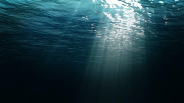 vidéos et rushes de deep ocean bleu ciel boucle - corail cnidaire