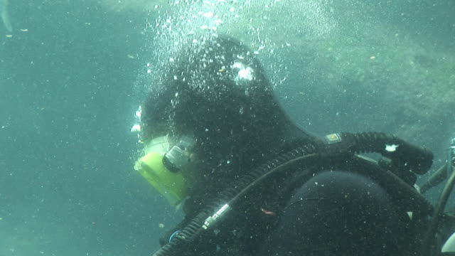 deep sea diver - hd & pal - diving suit stock videos and b-roll footage