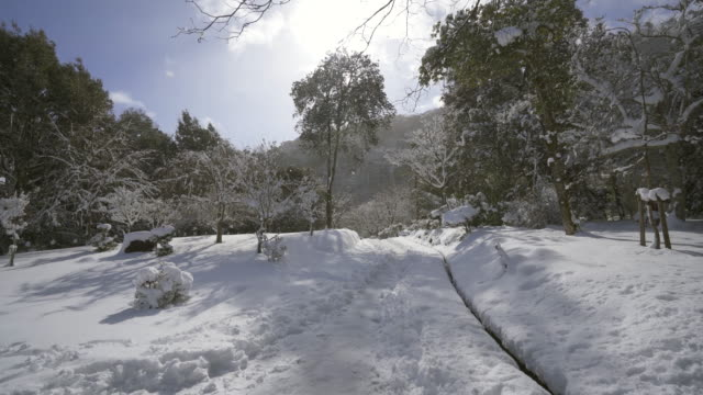 deep snow in arashiyama park - 深い雪点の映像素材/bロール