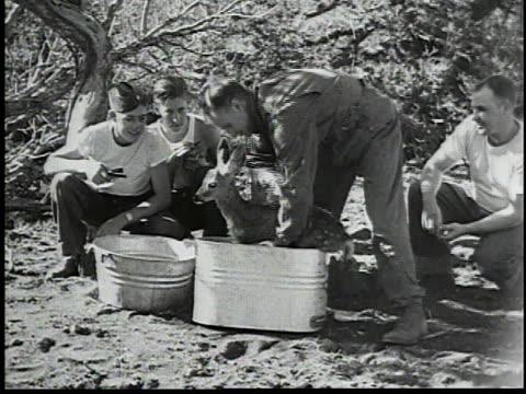 deer in woods / men washing deer / men feeding deer from a bottle - fawn stock videos & royalty-free footage