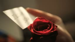 Defocused note I LOVE YOU at sunset in female hand on background of red rose. Valentine Day, February 14, birthday, anniversary, first date concept. Slow motion and close up