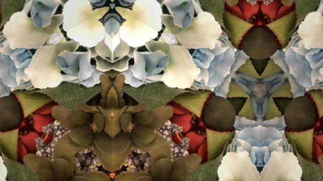 stockvideo's en b-roll-footage met intreepupil, surreality abstracte bewegende beelden - psychedelisch