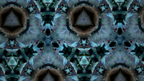 defocused , surreality abstract motion graphics - kaleidoscope pattern stock videos & royalty-free footage