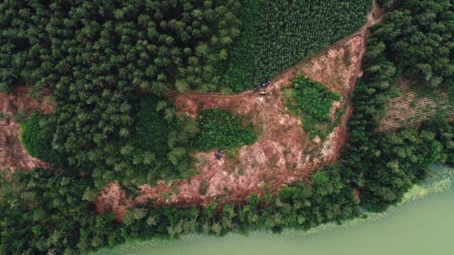 vídeos de stock e filmes b-roll de deforestation by the lake. aerial view - desastre ambiental