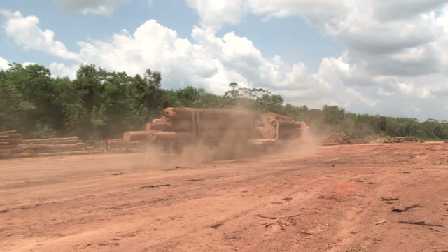 deforestation in amazon rainforest - chopped stock videos and b-roll footage