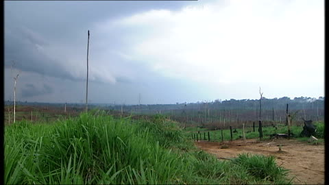 deforested farm land; brazil: the amazon basin: amazonas: ext good shots of farm created by deforestation of rainforest showing dark rainy storm... - timber yard stock videos & royalty-free footage