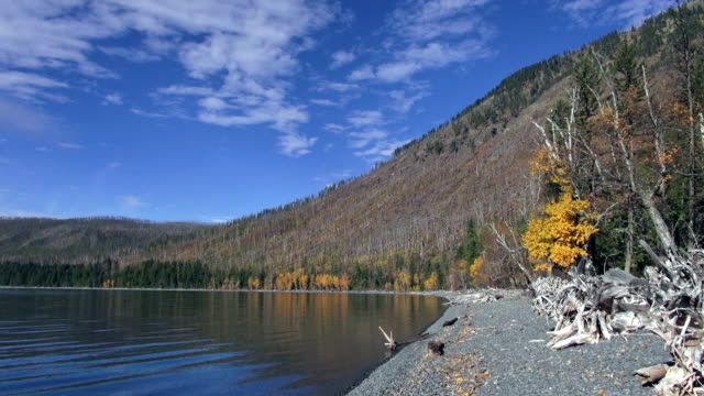 180 degree pan wide shot of mountain lake with yellow fall trees along shoreline and mountain peaks in background.