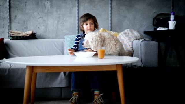 stockvideo's en b-roll-footage met heerlijke cupcake - living room