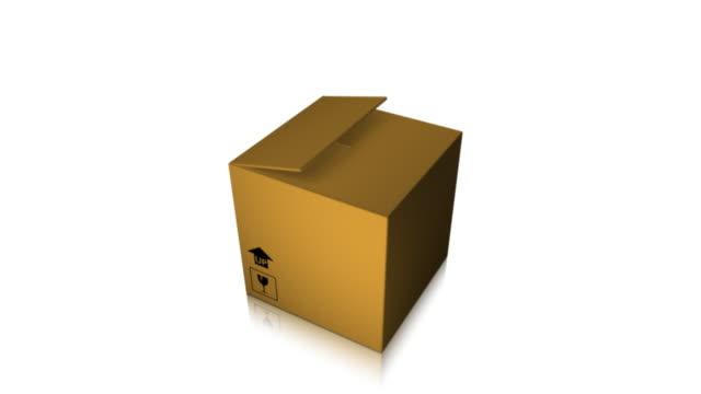 Lieferung 01 Box Eröffnung