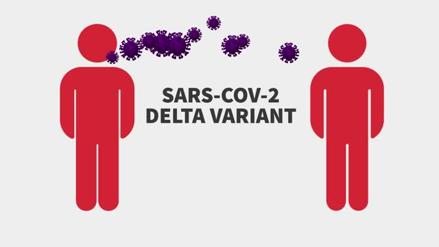 delta variant of covid-19, new variants of coronavirus, mutation in the virus's spike protein, uk variant brazil variant india variant - biomedical animation stock videos & royalty-free footage