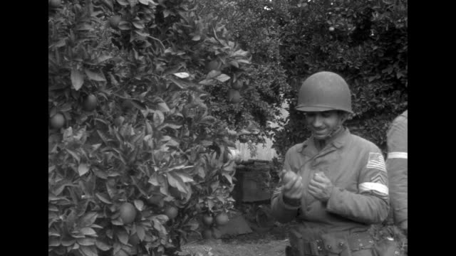 vs demolished buildings in oran / two us soldiers in orchard / three soldiers next to tree in orchard one sitting on ground writing / two wounded... - allied forces stock videos and b-roll footage