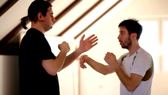 demonstrating  defensive techniques in kung fu - fist stock videos & royalty-free footage