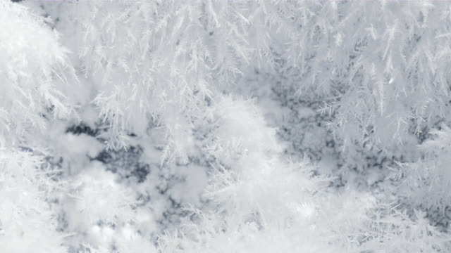 dendritic ice - macro stock videos and b-roll footage