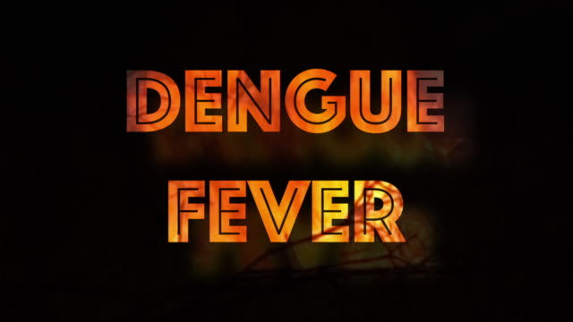 Dengue Fever tropical disease infographic