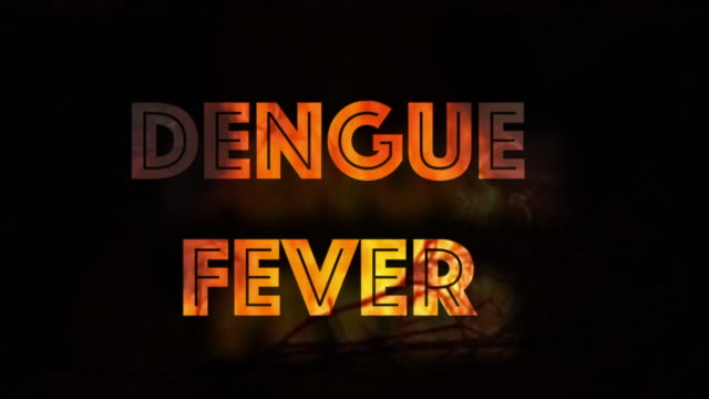 Dengue Fever tropical disease shaking infographic