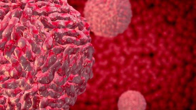 vídeos y material grabado en eventos de stock de virus del dengue loopable - estructura molecular