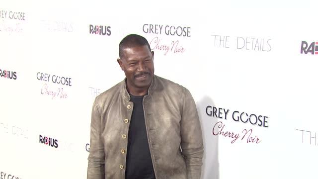 dennis haysbert at grey goose vodka hosts 'the details' premiere in hollywood 10/29/12 - grey goose vodka stock videos & royalty-free footage