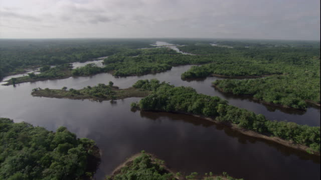 Dense rain forests surround the Amazon River and its tributaries. Available in HD.