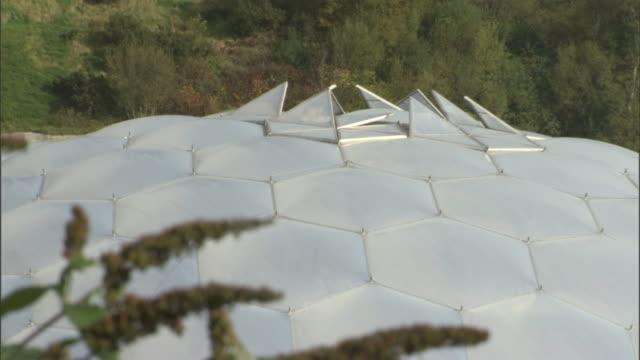 vídeos y material grabado en eventos de stock de dense trees surround the dome of the eden project in cornwall. - cornwall inglaterra