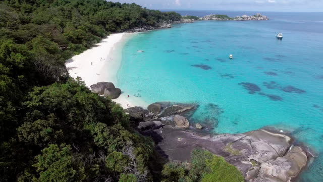 vídeos de stock e filmes b-roll de dense vegetation and a paradise beache of the similan islands, thailand - david ewing
